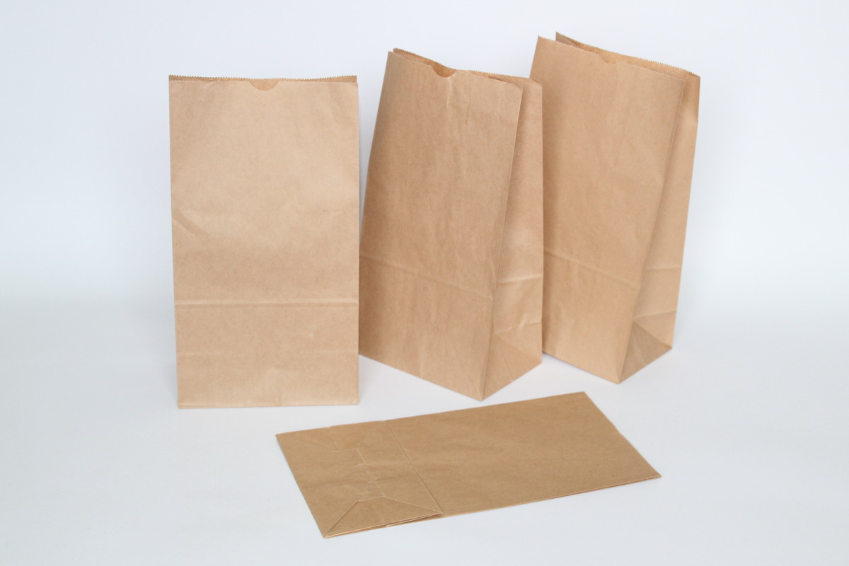 Paper bags for Brown paper bag craft